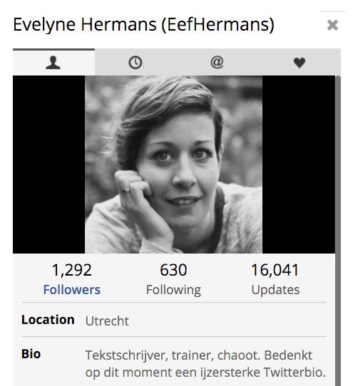 Twitterbio met Droste-effect van Evelyne Hermans