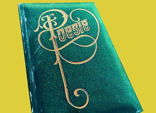 cover van het boekenweekgeschenk over poesiealbums 1972